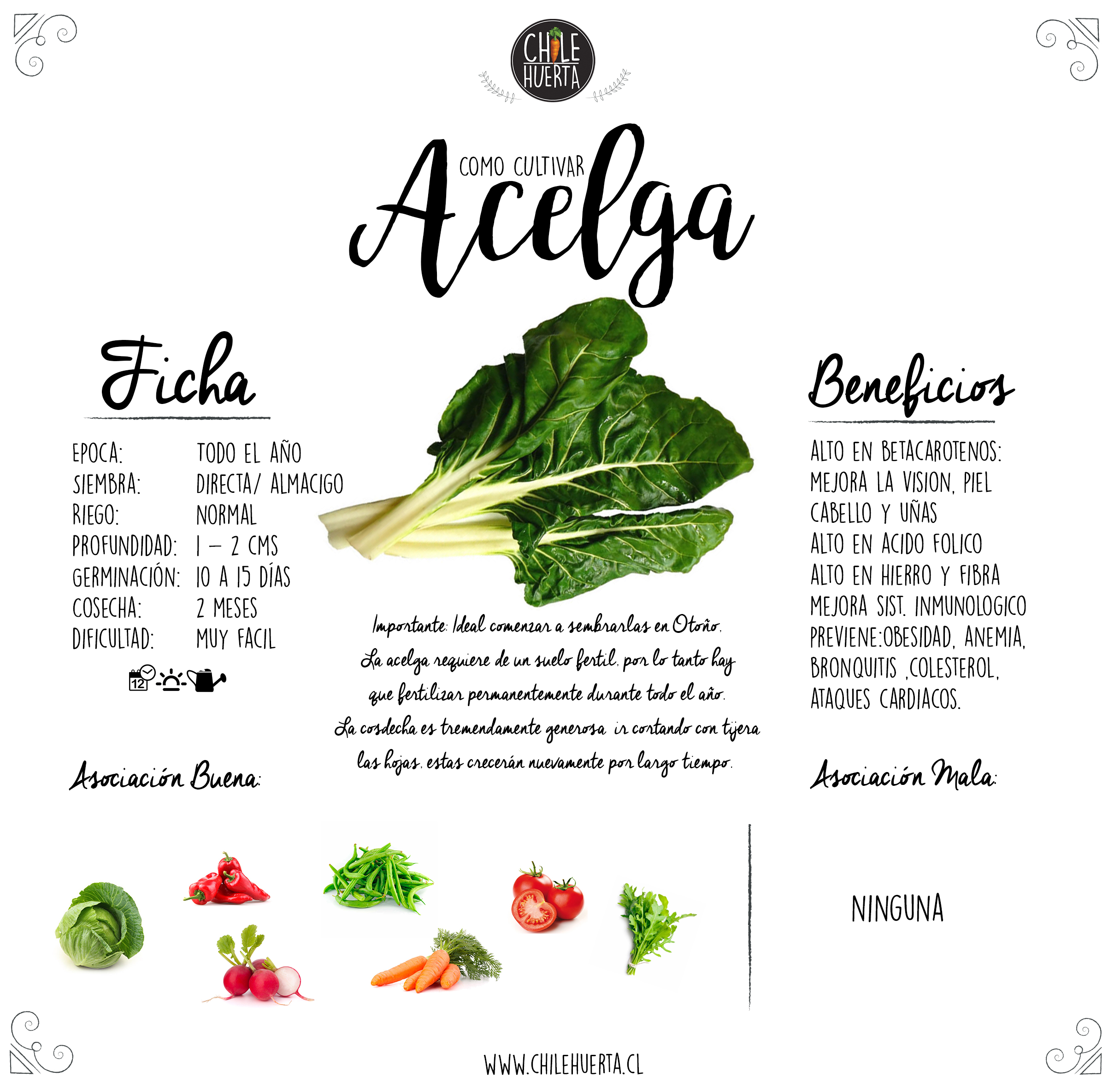 alimentos para la gota pdf alimentos que no se pueden comer con acido urico alto enfermedad acido urico alto